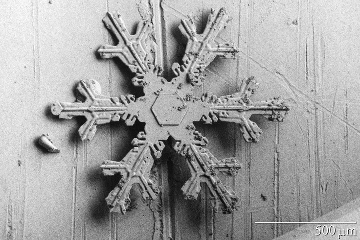 This image shows a hexagonal snowflake with beautifully crystalline arms called dendrites.