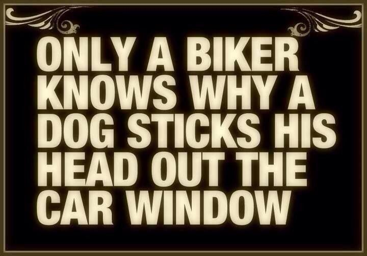 Harley Davidson-thats right-I no the feeling!