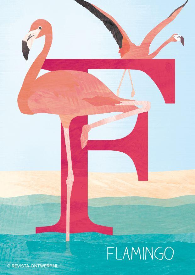 De F is van flamingo. Hij staat vaak op één been in het water en heeft een prachtig roze kleur. Een tropische verschijning!