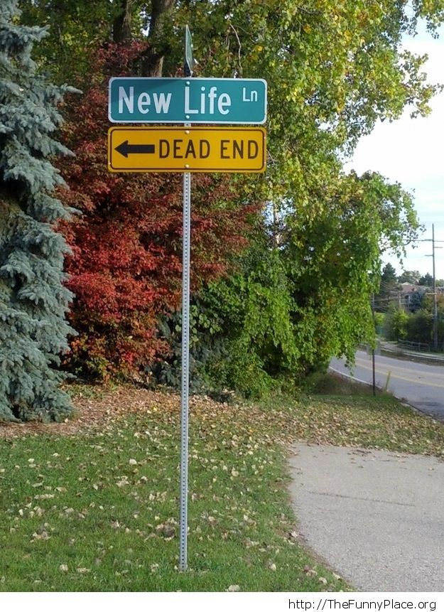 New life or dead end