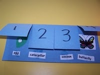 butterfly life cycle flipchart. i actually made this one