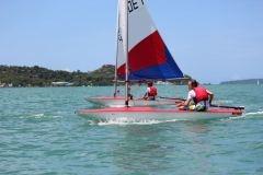 Topper sailing