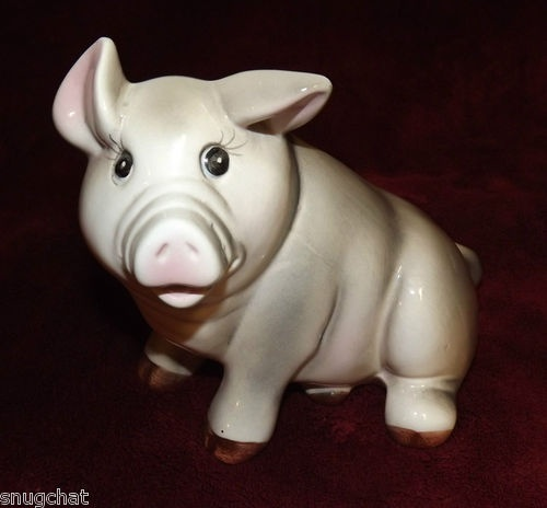 Perfect piggy bank for your youngster who's saving for a rainy day!