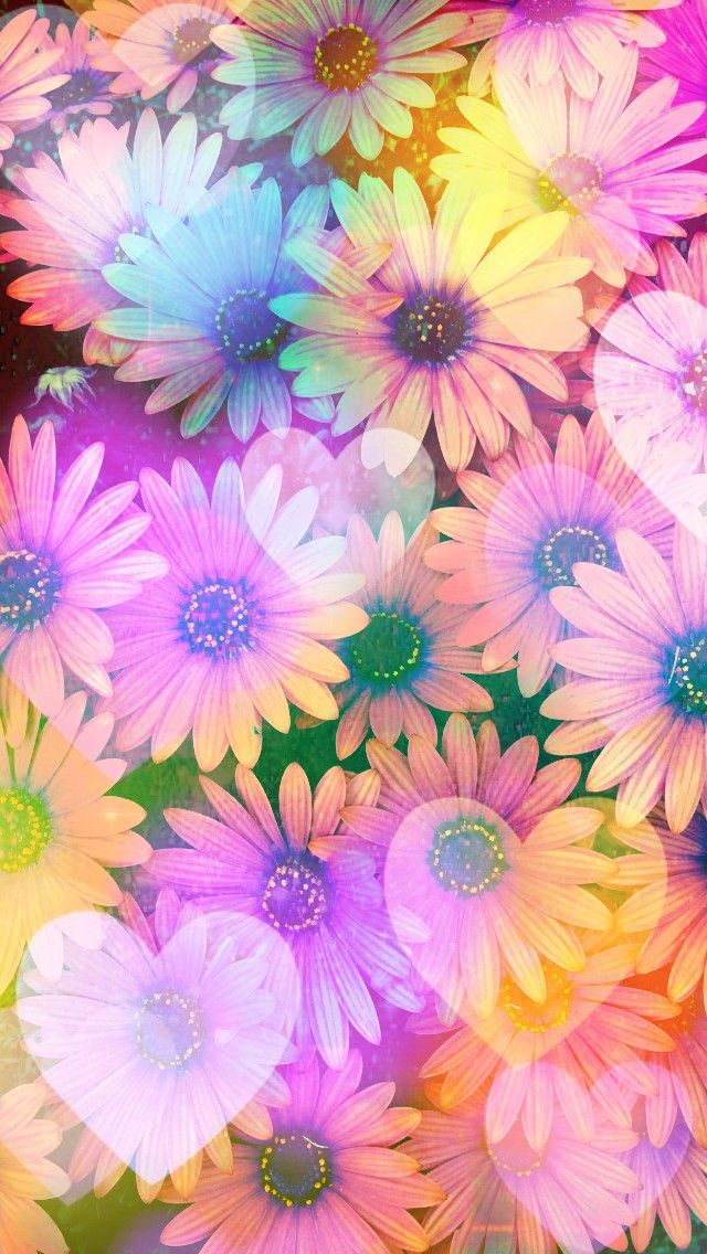 Rainbow Springtime Daisies Made By Me Flowers Floral Backgrounds Glitter Colorf Flower Background Wallpaper Pink Wallpaper Nature Flower Iphone Wallpaper Glitter free iphone wallpaper spring