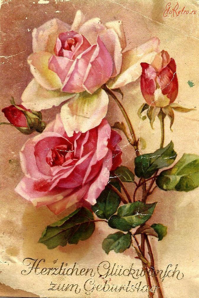 чисто поздравления с днем рождения цветы картинки винтаж эти цветы нравятся
