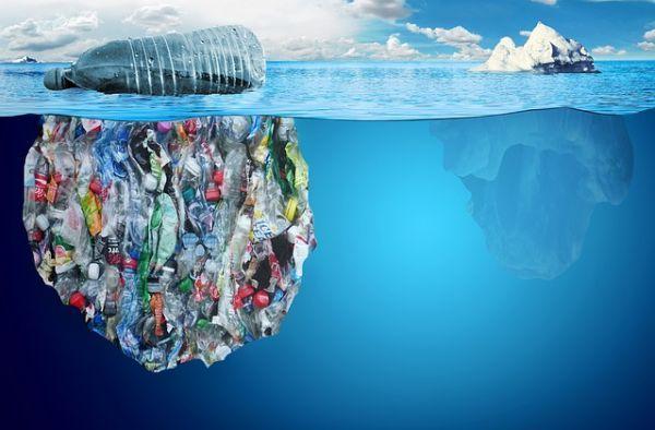 """Los efectos de la contaminación ambiental son fatales. ¿Imaginas los daños terribles que causa la contaminación al medio ambiente en la fauna, naturaleza y en el hombre? La contaminación ambiental de las grandes ciudades afecta la salud cardiovascular. Se comprobó que existe una relación directa entre el aumento de las partículas contaminantes del aire de la ciudad y el engrosamiento de la pared interna de las arterias (la """"íntima media""""), que es un indicador comprobado de aterosclerosis."""
