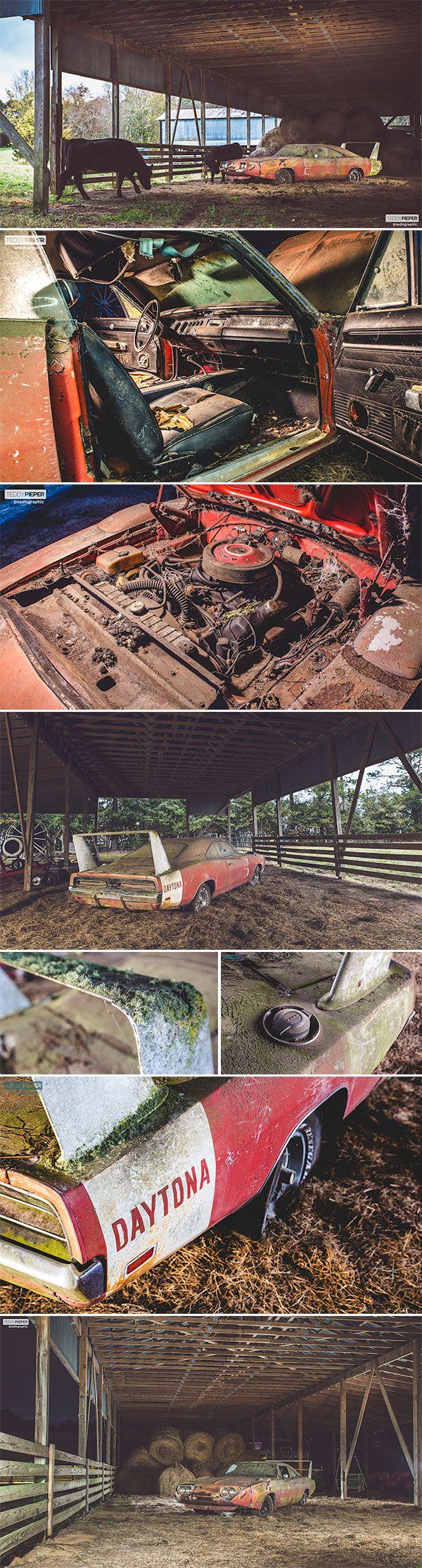 1969 Dodge Daytona Barn Find. This is so sad!