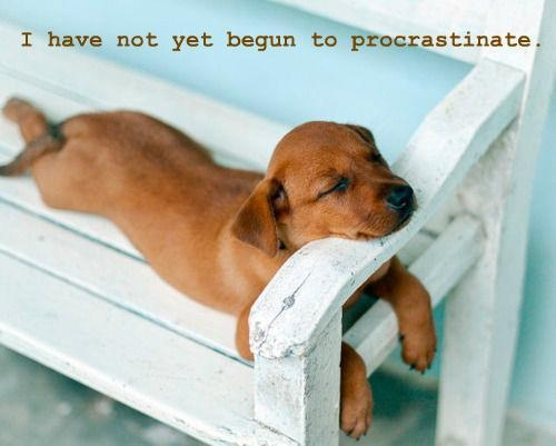 I have not yet begun to procrastinate.
