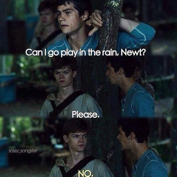 What even is this I am laughing so hard. Newt and Tommy TMR The maze runner