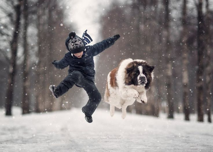 Little Kids And Their Big Dogs | L'hiver