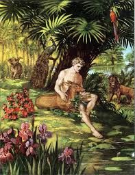 pictures of garden of eden - Google Search