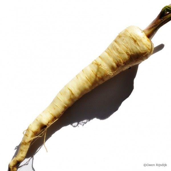 Voedselencyclopedie.nl - Recept: wortel-pastinaak-witte-bonensoep