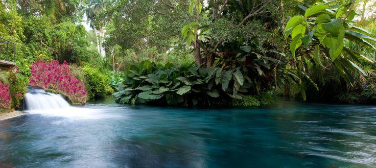 Las Estacas | Hotel parque acuático natural - Las Estacas | Parque acuático y natural en Morelos México