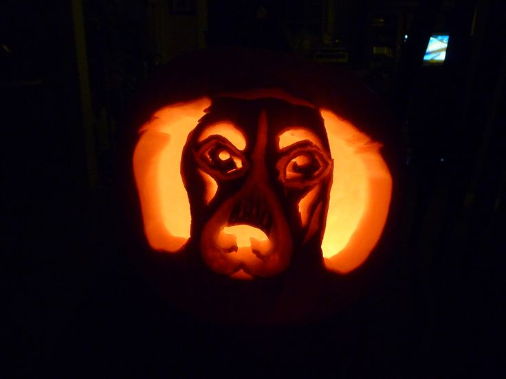 Beagle hound dog halloween pumpkin carving