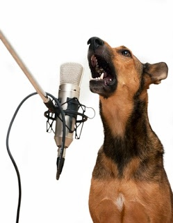 Perro cantando  www.perronality.com
