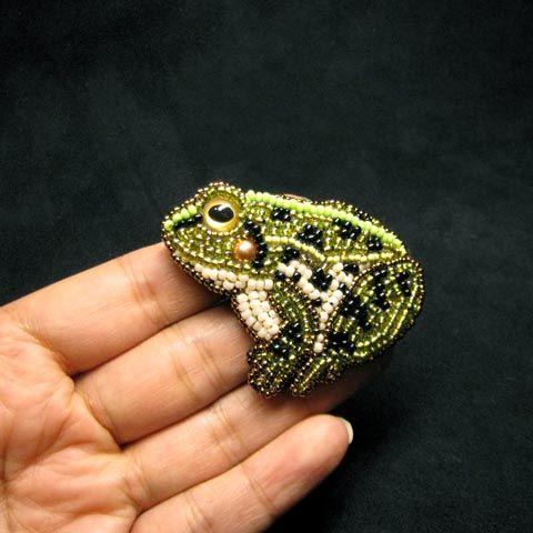 Cute Frog!  :D