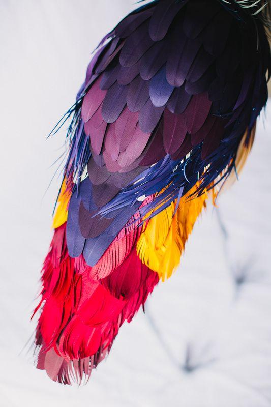 beautiful paper birds by colombian artist diana beltran herrera