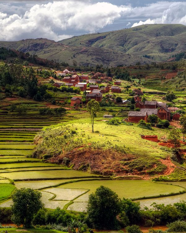 rice fields + the village of toamasina, madagascar | villages and towns in africa + travel destinations #wanderlust