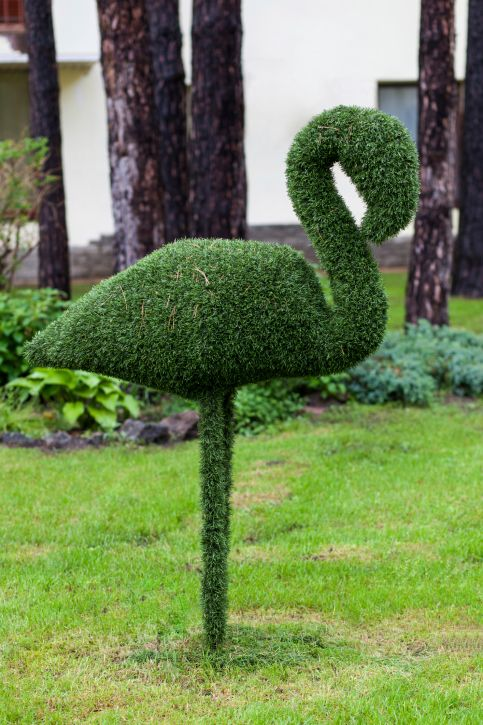 Topiary plant in the shape of swan