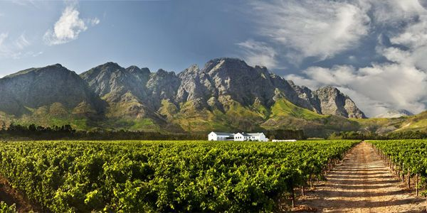 Holden Manz Wine Estate in Franschhoek, South Africa: a luxury guesthouse and restaurant on an award-winning vineyard. i-escape.com