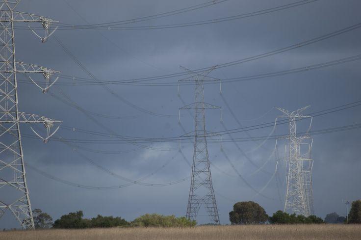 Gheringhap power lines being stalked . . . again
