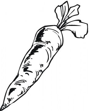 carrot drawing | Free printable coloring pages, Carrot ...
