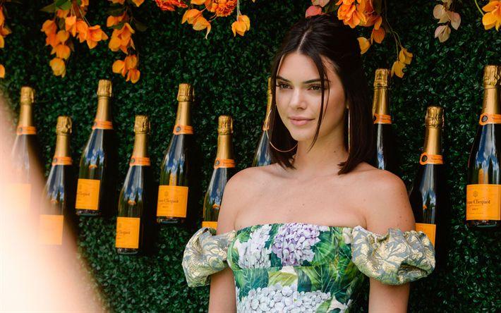 Lataa kuva Kendall Jenner, 2017, Hollywood, amerikkalainen näyttelijä, kauneus