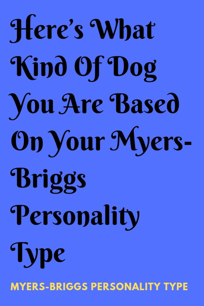 Here's What Kind Of Dog You Are Based On Your Myers-Briggs Personality Type … – INTJ
