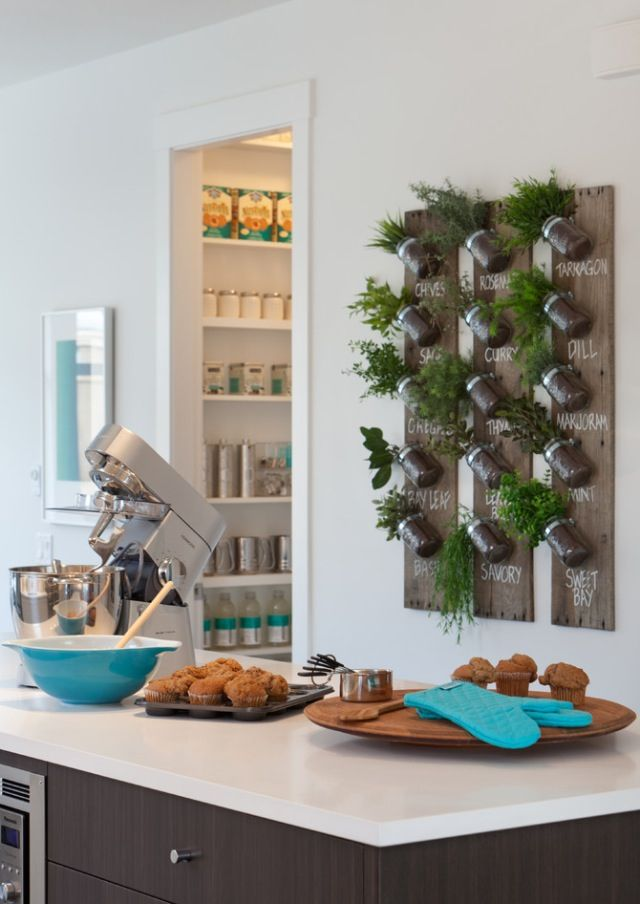 Fab idea for an indoor herb garden! Where to put this, that would get enough sun!?!