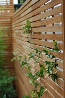 slatted horizontal fencing