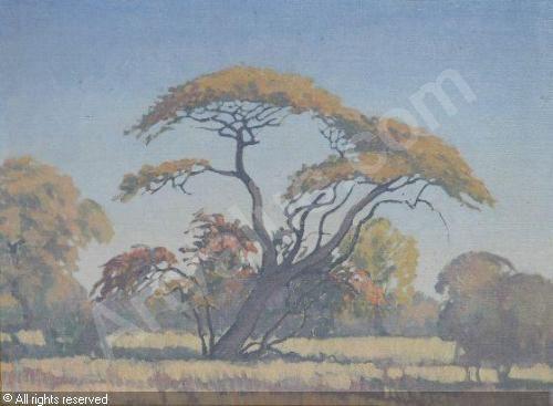 PIERNEEF Jacob Hendrik - TREE IN A LANDSCAPE