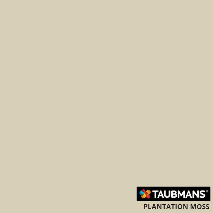 #Taubmanscolour #plantationmoss