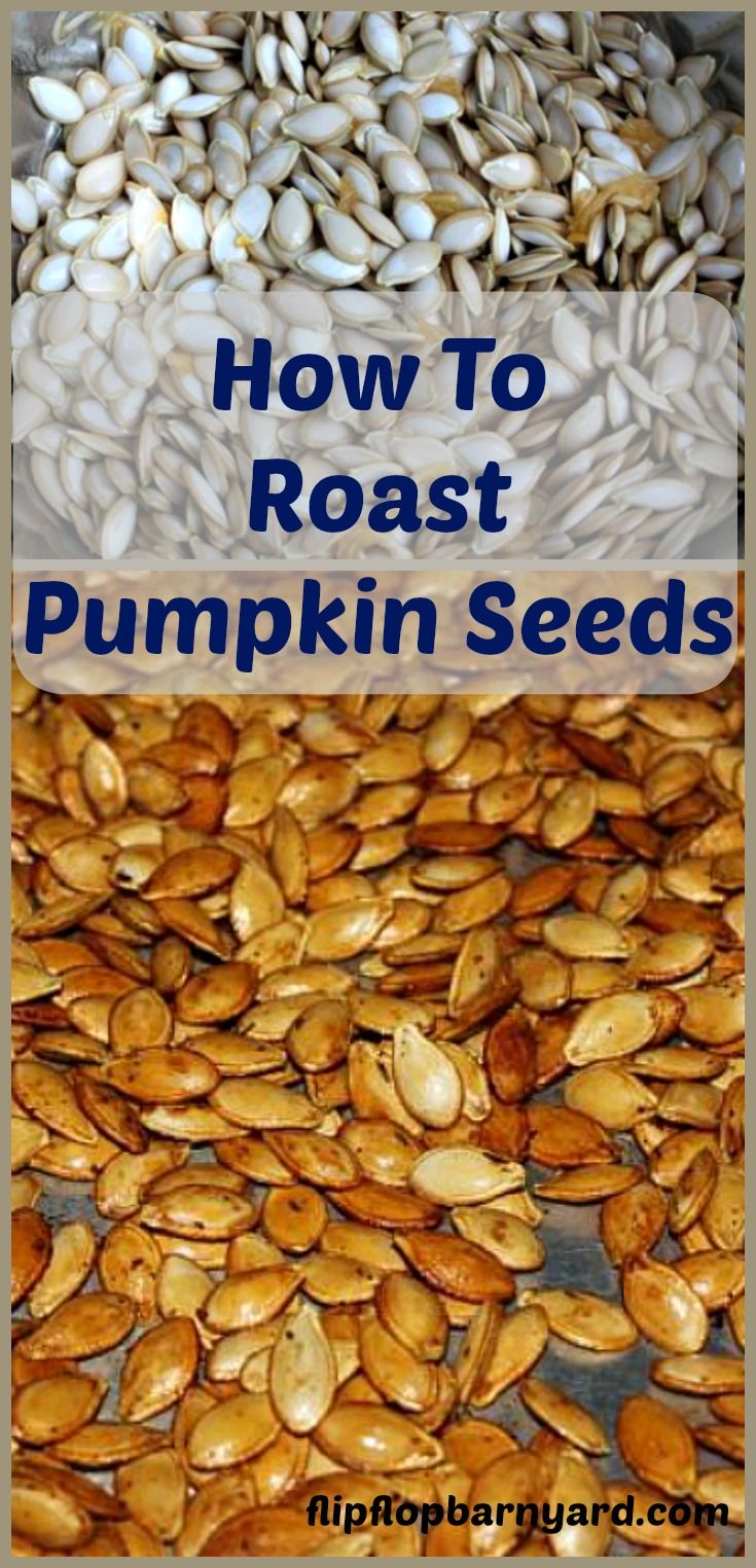 How To Roast Pumpkin Seeds | The Flip Flop Barnyard