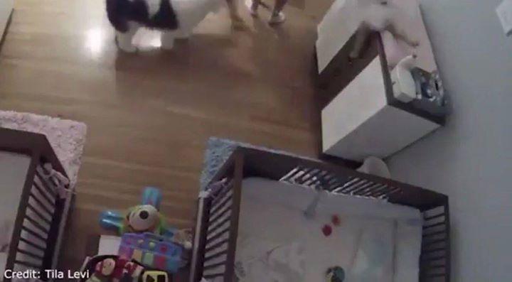ردة فعل سريعة من طفل تنقذ أخاه الرضيع قبل لحظات من سقوطه تحوله إلى بطل في وسائل الإعلام الأميركية  http://ift.tt/2qdvjZB