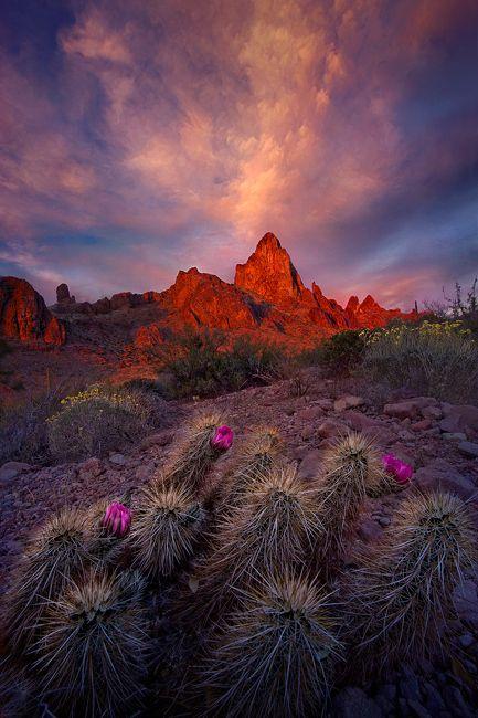 Springtime sunset over southern Arizona