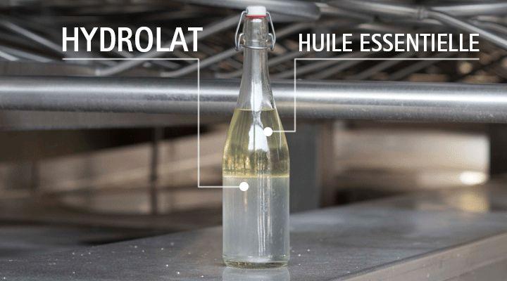 L'hydrolat, produit de la distillation en même temps que l'huile essentielle, possède de nombreuses vertus s'il est pur et naturel. Comment le reconnaître?