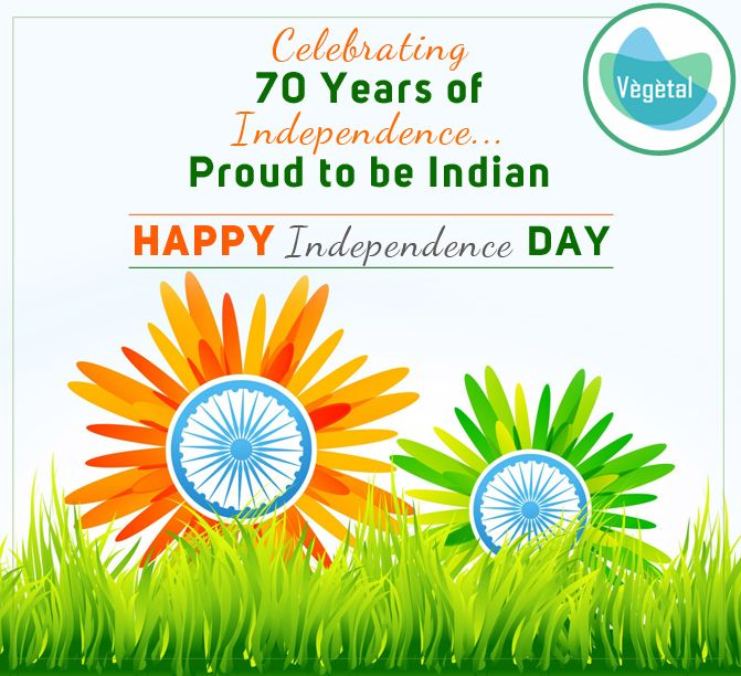 #VegetalPersonalCare Team Wishes You a Very Happy Independence Day. #IndependenceDay #Vegetal Products are 100% #Natural Extracts. Love #Nature. Buy Natural For more details: http://bit.ly/2kJu7h9