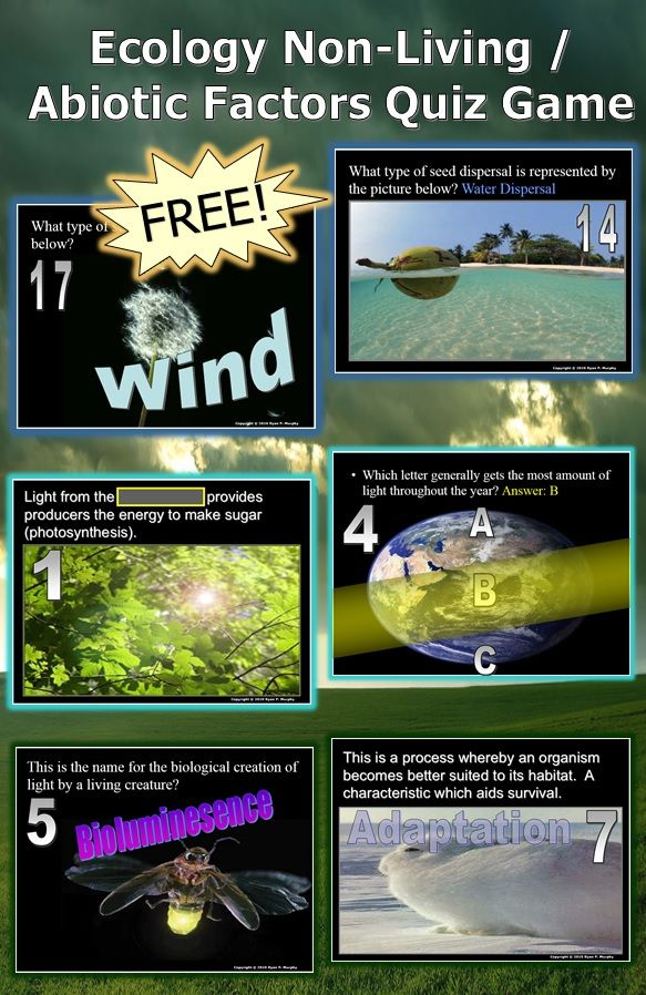 This is a FREE 110 Slide PowerPoint Quiz Game about Ecology Abiotic / Non-living Factors such as temperature, moisture, Light, and their relationship to living organisms. Answers and worksheet included. -Enjoy! Science from Murf LLC
