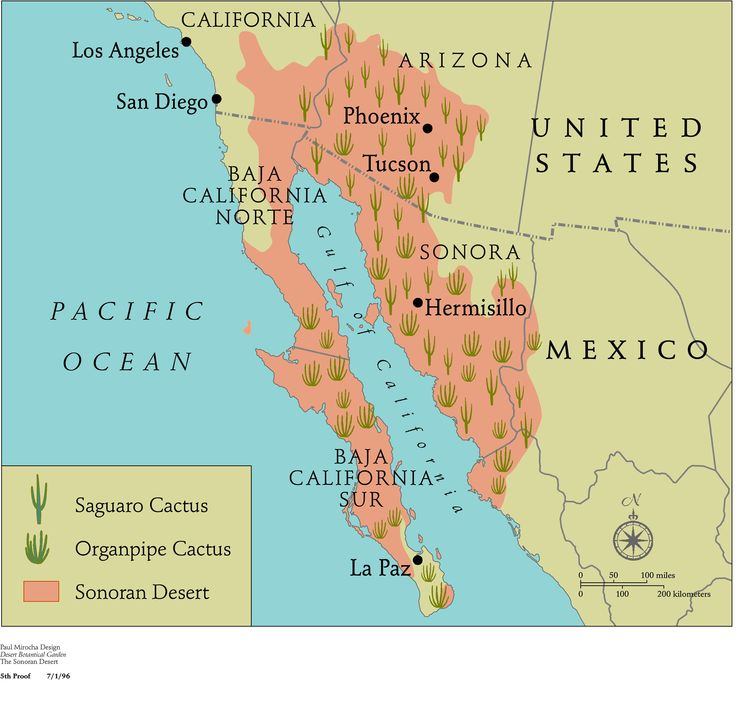 Best Map Location Ferocactuses Images On Pinterest Maps - Sonoran desert on us map
