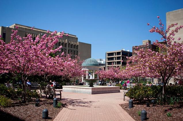 Kogan Plaza, George Washington University