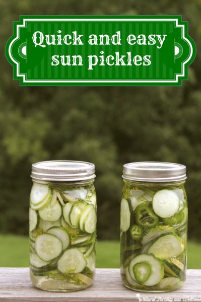 Quick and easy dill sun pickles  6½ cups water 3¼ cups white vinegar ⅔ cup canning salt (available on Amazon) 4-6 cloves of garlic (you can add more if you really like garlic - I do about 3 cloves per jar) about 10 medium pickling cucumbers fresh dill, about 8-10 heads optional - jalapeno or onion slices