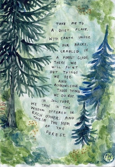 Take me to a quiet place. With earth under our backs, cradled in a forest glade. There we will point out things we see and acknowledge those things we do not in solitude, we take in the wisdom offered in each other and take in the hum of the forest.
