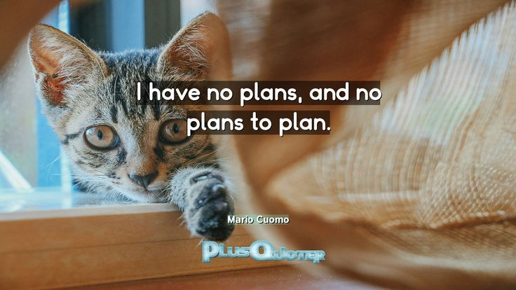 """""""I have no plans, and no plans to plan""""- Mario Cuomo  https://link.crwd.fr/4AQE"""