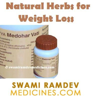 Herbs for weight loss Natural Herbs for Weight Loss - Baba Ramdev Products  www.swamiramdevme...   Is ...