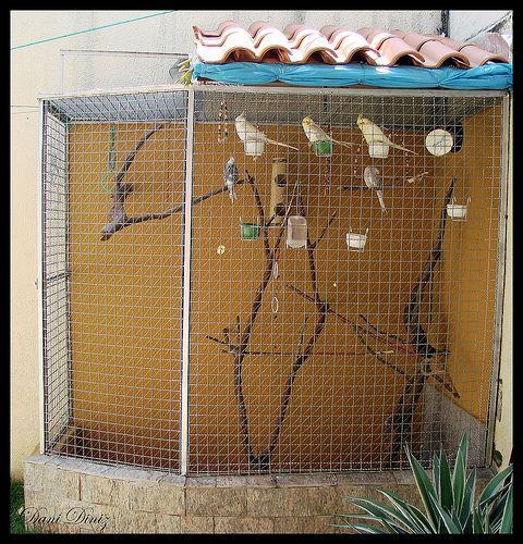 como fazer um viveiro aves - Pesquisa Google