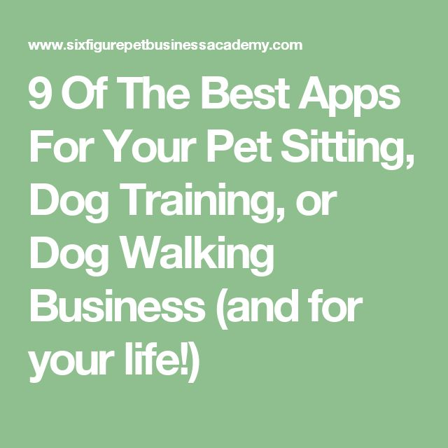 9 Of The Best Apps For Your Pet Sitting, Dog Training, or Dog Walking Business (and for your life!)