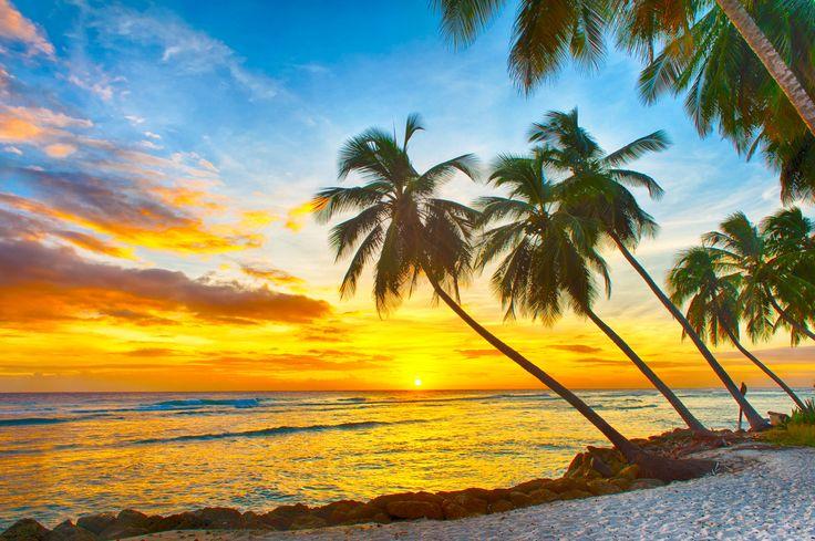 Coucher de soleil sur une plage de Punta Cana Plage de Punta Cana #croisière #croisierenet.com #paysage #caraïbes #voyage #croisièrecaraïbes