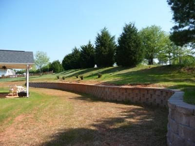 3730b0b43d8a7ac2a79d737ccef8cfeb No Mow Backyard Ideas on grass backyard ideas, landscape backyard ideas, no mow garden,