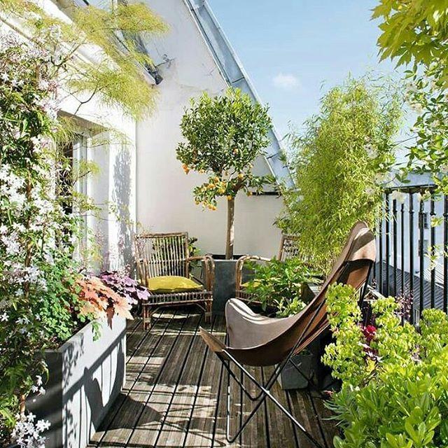 #balcon #balkon #aranżacja #inspiration #outudorlife #balconyview #altan #balconygarden #balkong #balcone #paisagismo #jardim #gardening #svalir #insta4like #landscape #outdoors #desing #fotel #varanda #balkong #garden #balcón #rest #relaks #green #Berlin #bowl #μπαλκόνι #балкон źródło:marieclairemaison