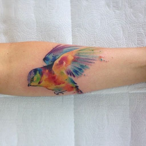 Feather Tattoo Never Look Back But Never Forget Always: 1000+ Ideas About Watercolor Bird Tattoos On Pinterest